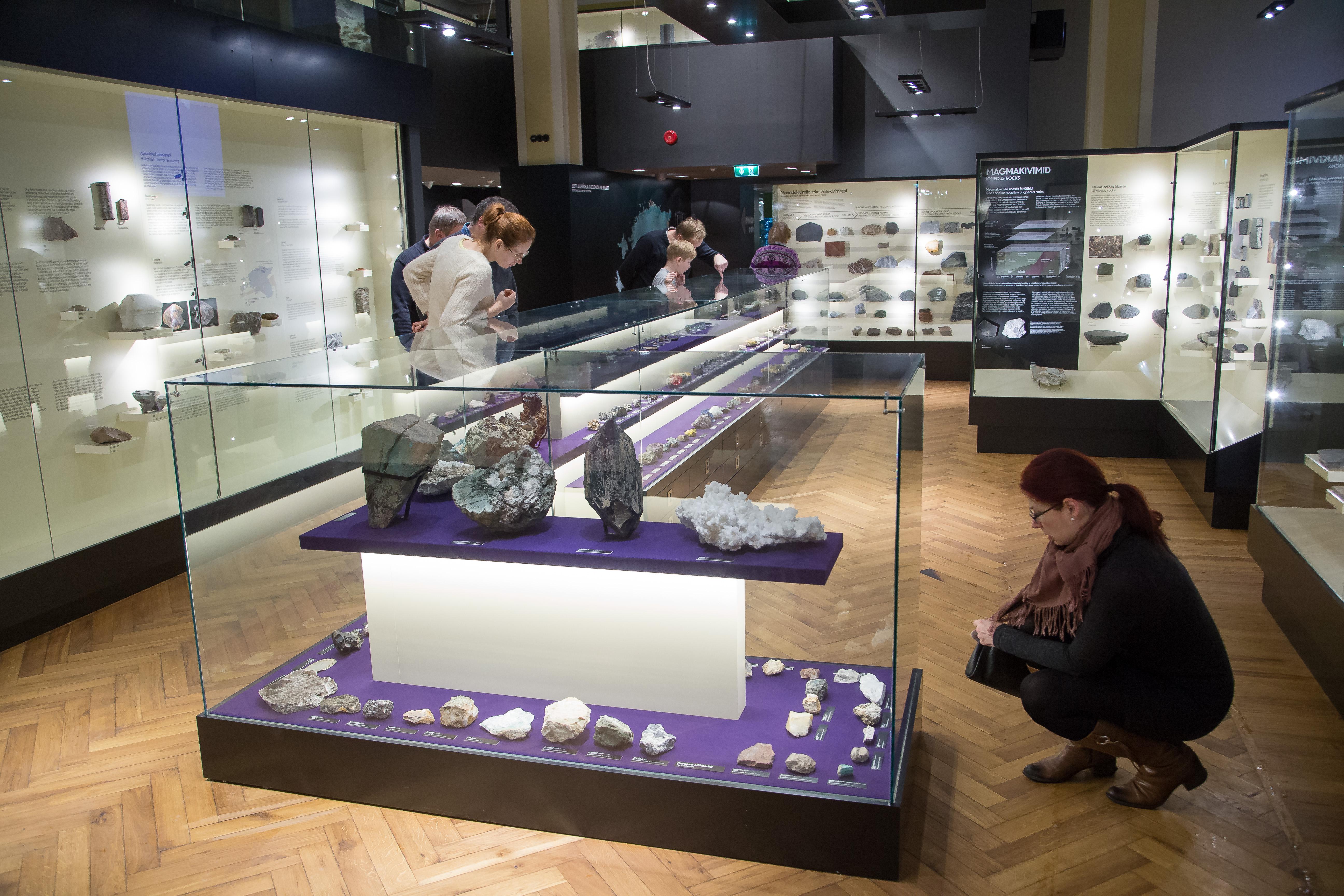 Külastajad uudistamas muuseumi väljapanekut (foto: Andres Tennus)