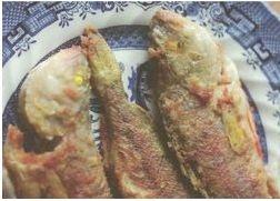 Vanausuliste kala