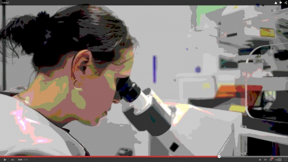 bakterid_mikroskoobis_laborikatse_1.jpg